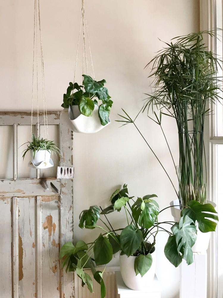 Leren plantenhouders