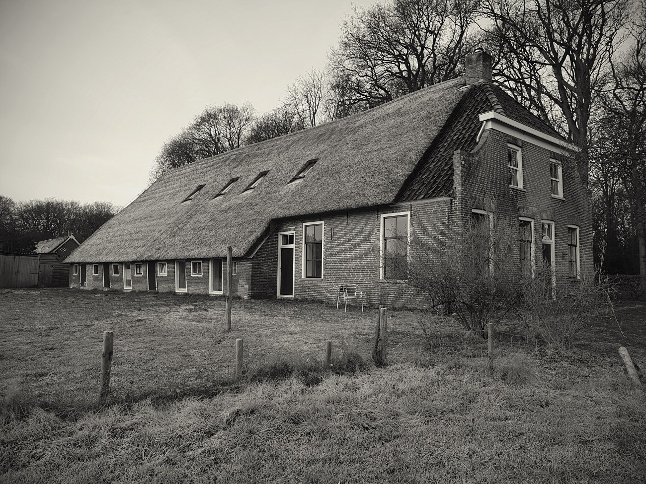 boerderijfoto
