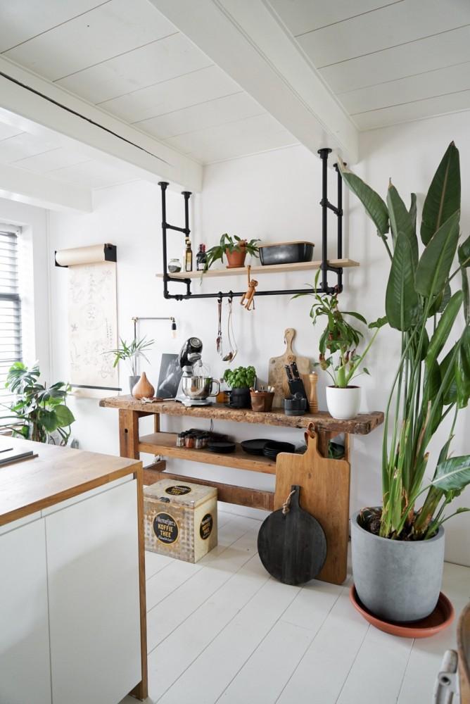 planten keuken