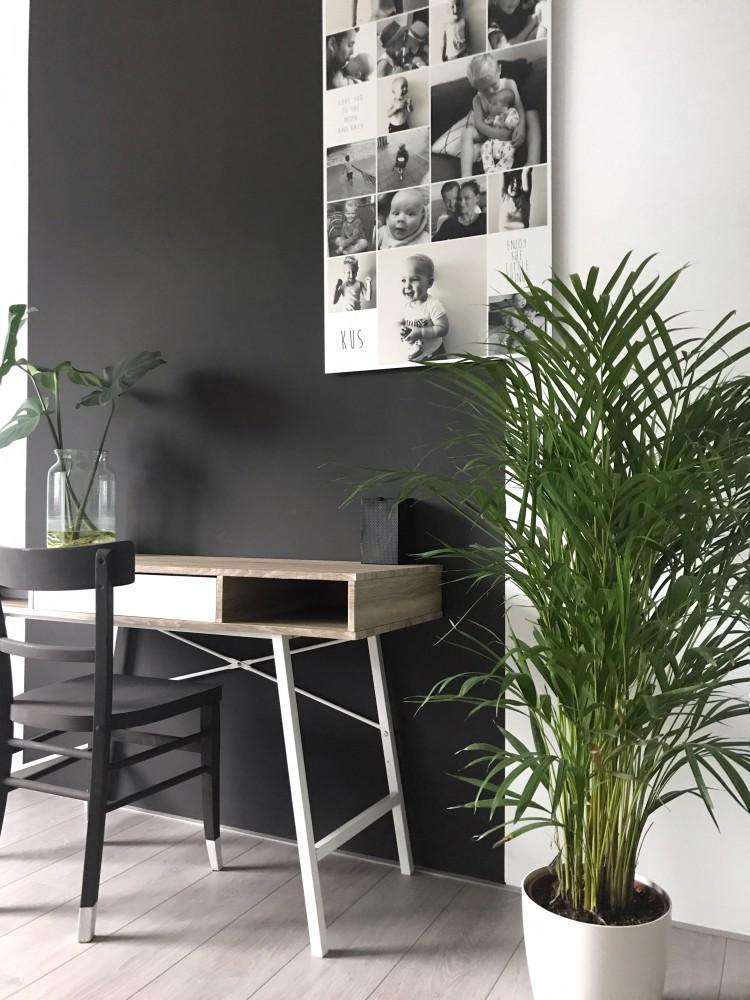 Hou je van planten blog