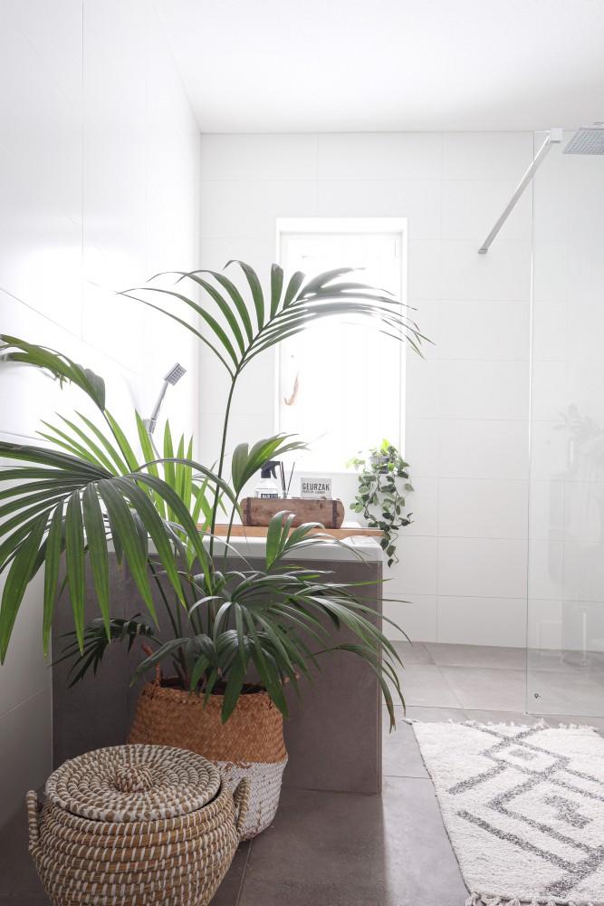 Hou je van planten
