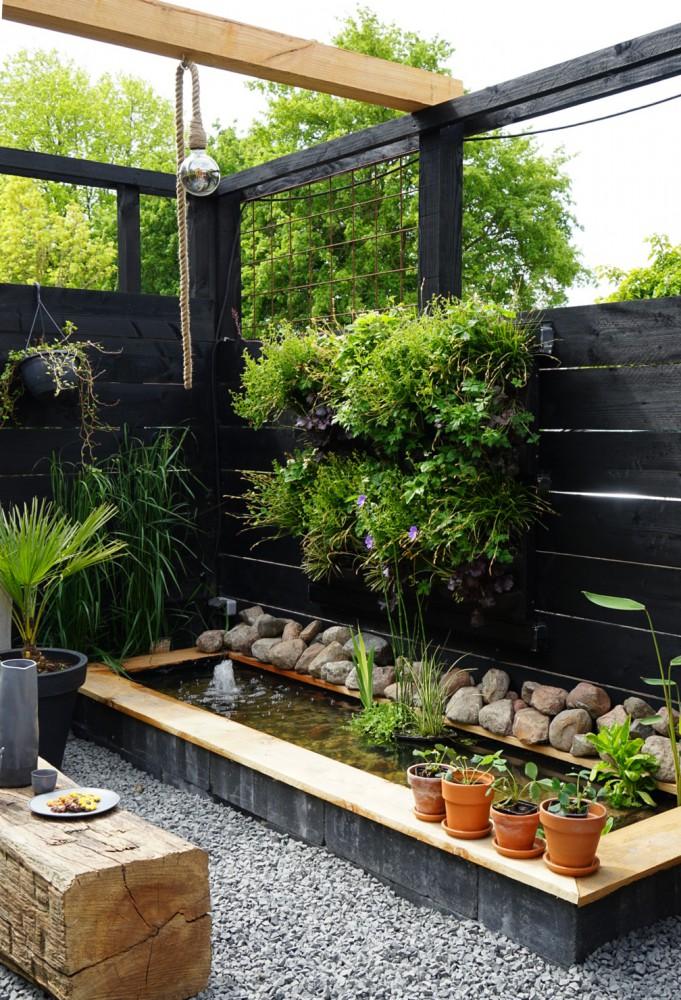 urban jungleplant