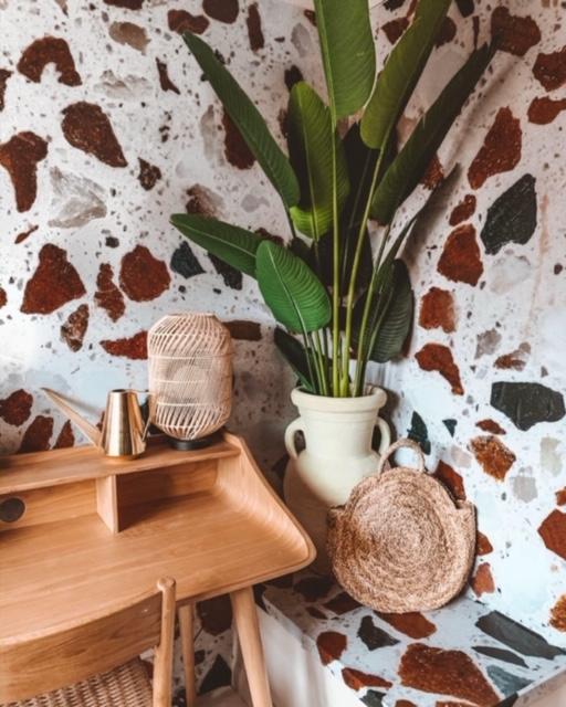 plants interior