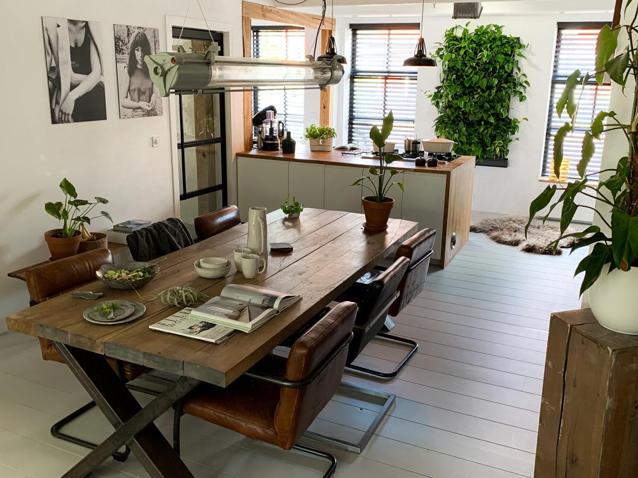 plantenwand in huis