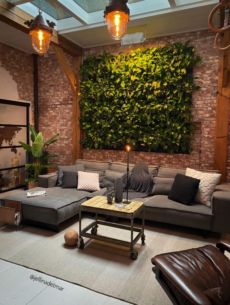plantenwand voor binnen